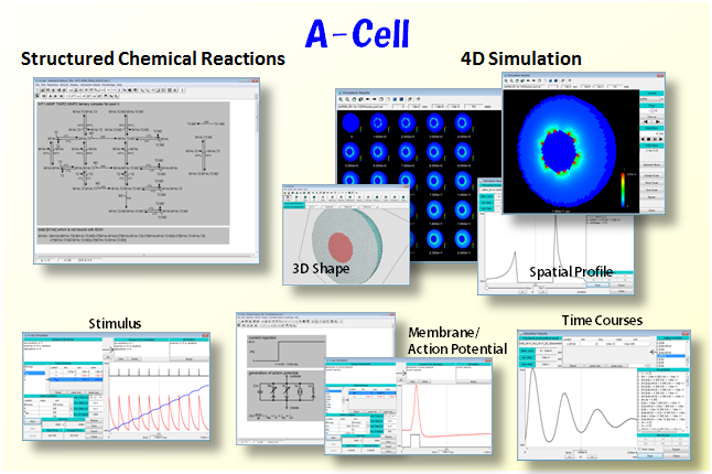 A-Cell_overall_image